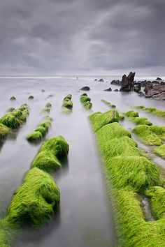Must go here. | Barrika I Barrika is a town located in the province of Biscay, in the autonomous community of Basque Country, northern Spain.