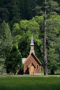 Yosemite Chapel.  Enough to pull you out of the woods for a few hours.