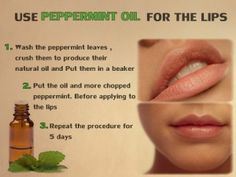 Peppermint oil for the lips - All About the best Natural Oils and Butters Peppermint Oil, Natural Oils, Diy Beauty, How To Apply, Lips, Good Things, Health, Nature, Salud