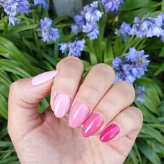 Perfect your look with pink nail polish. OPI pink nail polish is available in Nail Lacquer, Infinite Shine, GelColor and Powder Perfection varieties. Opi Pink Nail Polish, Opi Nails, Spring Nail Trends, Spring Nails, Pink Treats, Pastel Nails, Gel Color, Nail Art Diy, Perfect Nails