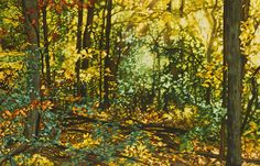 Ready for fall in Michigan! Feels like my backyard Into the Woods---watercolor---39 x 25