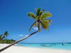Isla Saona, Dominicaanse Republiek