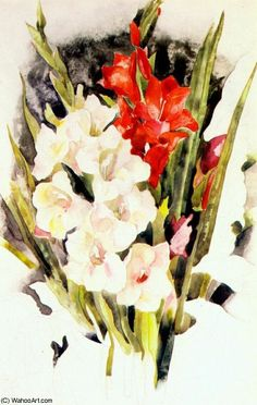 Distinctive Gifts Mean Long Lasting Recollections Charles Demuth Gladiolas 512800 Watercolor Artists, Watercolor Paintings, Van Gogh Still Life, Charles Demuth, Ernst Haeckel, Gladiolus, Reproduction, Learn To Paint, Vincent Van Gogh