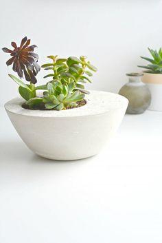 Vaso de plantas feito com cimento branco com suculentas. DIY - Como fazer um vaso de plantas de concreto