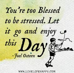 You're too blessed to be stressed. Let it go and enjoy this day! -Joel Osteen by deeplifequotes, via Flickr