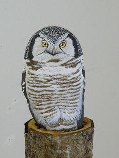 Pöllö..Incredible rock owl!