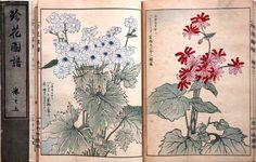 "Japanese vintage original woodblock print book, Yamana Yuseki, ""Chinka Zufu"""