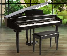 The Artesia AG-28 Micro Grand Digital Piano offers a complete package of style and elegance with the latest in music technology. It features an exquisite polished ebony cabinet, expressive instrument