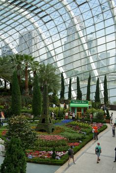 Singapore - Exploring the Fantastic Flower Dome and The Cloud Forest in the Gardens by the Bay in Singapore