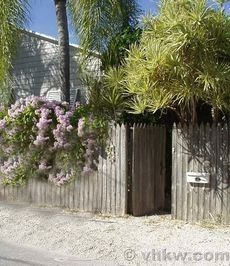 Everyone dreams of a sun drenched Caribbean style cottage tucked away behind a tall picket privacy ...