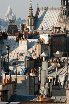Les toits de Paris....