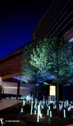 «L'Ô» Lighting in Jardin du Musée Quai Branly by Yann Kersalé
