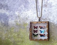 Butterfly Shadowbox Collection Locket by RenataandJonathan on Etsy, $110.00