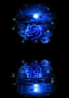 Animated Glitter Graphics | Animated GIFs » Flowers » moon rose
