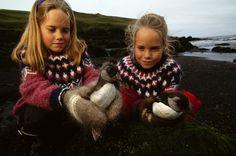 Girls release Atlantic puffins in Vestmannaeyjar, Iceland