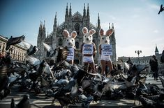 Activists from Peta protest against the use of rabbit fur in the fashion industry in Milan, Italy