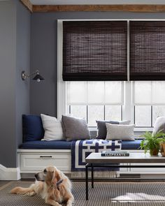 Woven Wood Shades set the scene for the ultimate family hangout—pup approved! Get the look at theshadestore.com. Bamboo Grass, Woven Wood Shades, Alexa Hampton, Decorative Borders, Design Consultant, Window Treatments, The Hamptons, Swatch, Curtains
