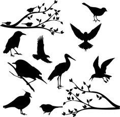 Clip Art Bird Silhouettes Clipart Birds by BeautyIsPower on Etsy. $5.00 USD, via Etsy.