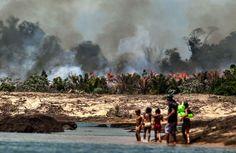 | 07.02.2017 | Levantamento feito pelo Ibama, a pedido do UOL, mostra que o entorno do Parque Indígena do Xingu sofre com os incêndios florestais ligados à expansão da agropecuária – que provoca o desmatamento e a seca na região. O portal divulgou a notícia nesta segunda-feira (07/02). Segundo o Ibama, a lavoura e a criação de pasto para gado provocaram o desmatamento da vegetação nativa da reserva localizada entre o Mato Grosso e o Pará. O calculo foi feito a partir da base de dados do…