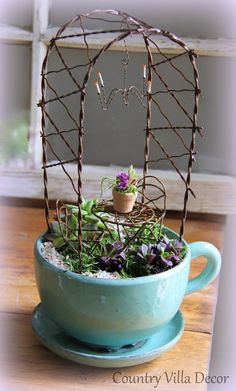 COUNTRY VILLA LIFESTYLE & DECOR : Succulent Mini-Gardens