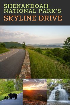Skyline Drive in Shenandoah National Park, Virginia, is one of the most beautiful road trips in the United States. From black bears to waterfalls, old homesteads and stunning Blue Ridge Mountains landscapes, its highlights are plentiful. Best Places To Camp, Places To Travel, Places To Visit, Beautiful Roads, Beautiful Landscapes, Weekend Trips, Day Trips, Virginia Vacation, Virginia Camping
