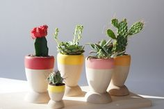 Image of Small Wooden Planters