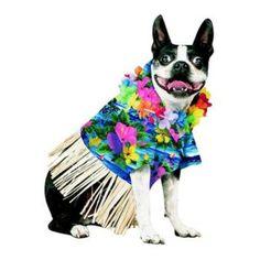 Pet Bootique Tiki Fun Dog Hawaiian Shirt Pet Costume.....want
