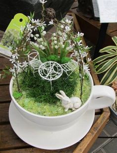 Good Photographs teacup fairy garden Concepts There may be lots of great fairy gardens on-line nonetheless it might be daunting to obtain started. Indoor Fairy Gardens, Mini Fairy Garden, Fairy Garden Houses, Miniature Fairy Gardens, Teacup Crafts, Fairy Statues, Little Gardens, Fairy Furniture, Garden Terrarium