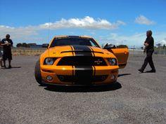 Do not feed the Snake @AllenIrwin01 427 Special Edition Shelby GT500 Super Snake @CarrollShelby @shelbyamerican #Deathrace2 #MyOctane #MyOctane #Mustang #stunts
