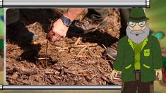 Erdő Ernő bácsi meséi - Hogyan ültessünk el egy fát?