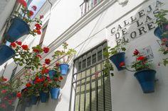Calleja de las Flores #Cordoba #Andalusien #Patio
