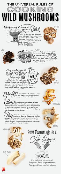 The Ultimate Infographic Of Wild Mushrooms - A great one page article on cooking wild mushrooms! Click through to read more.