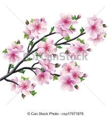 Image result for how to draw a cherry blossom tree step by step