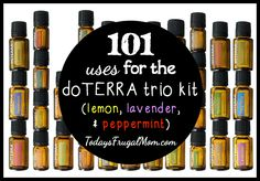 101 Uses For Lavender, Lemon, and Peppermint Essential Oils :: Today's Frugal Mom™