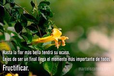Hasta la flor más bella tendrá su ocaso. Lejos de ser un final llega el momento más importante de todos.  Fructificar.  http://www.marcelozamora.com/escritos/para-cada-tiempo-una-mision.html