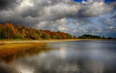 Clatto Reservoir, Camperdown Country Park, Dundee, Scotland. by Hilda Murray on 500px