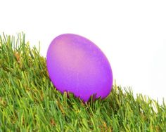 Perfect Purple Easter Egg (natural dye: red wine)