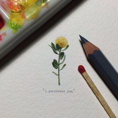 365 Postcards For Ants: Illustrator Creates One Mini Painting Per Day For A Year - Flower