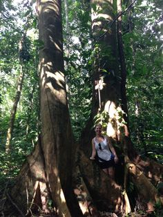 One of our clients enjoying the private hiking trail in Las Villas de San Buenas. Standing next to a fig tree. #hiking #costarica #jungle