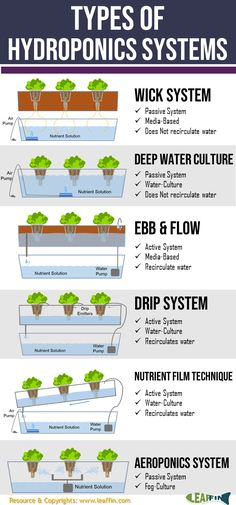 There are 6 basic types of hydroponic systems; Wick Water Culture Ebb and Flow (Flood Drain) Dr&; There are 6 basic types of hydroponic systems; Wick Water Culture Ebb and Flow (Flood Drain) Dr&; MerleJenkins […] and flow Hydroponics diy Aquaponics System, Hydroponic Farming, Hydroponic Growing, Aquaponics Diy, Growing Plants, Aquaponics Greenhouse, Hydroponic Vegetables, Growing Microgreens, Indoor Hydroponic Gardening