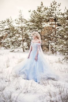 86898b45202 Winter Cinderella wedding ideas Frozen Wedding Dress