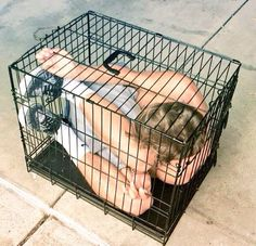when Jack fit into a cage even though everyone said he couldnt.he proved them wrong Jack Gilinsky, O2l, Jack Johnson, Jack And Jack, Magcon Boys, Cage, Magcon