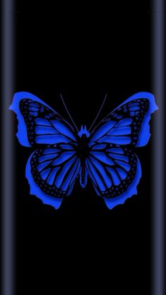 By Artist Unknown. Heart Wallpaper, Butterfly Wallpaper, Locked Wallpaper, Cute Wallpaper Backgrounds, Cellphone Wallpaper, Pretty Wallpapers, Cool Wallpaper, Black Backgrounds, Butterfly Pictures