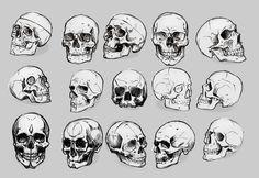 My bookmarks - Kopf Skeleton Face Drawing, Human Skeleton Anatomy, Skull Anatomy, Skeleton Drawings, Skeleton Art, Anatomy Art, Body Anatomy, Skull Reference, Art Reference Poses