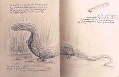 Fanart, Happy Quotes, Good Books, Watercolor Tattoo, Fandoms, Frases, Harry Potter Craft, Book Memes, Fantasy Creatures