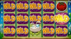 Free Spins Casino: Wonky Wabbits – full list free spins 24.02 – 25.02...