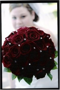Black Baccara Rose Bouquet | What my bouquet will look like except no greenery. Black baccara roses ...