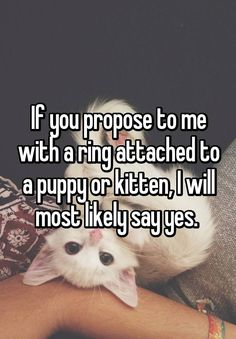 If you propose to me with a ring attached to a puppy or kitten, I will most likely say yes.