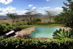 Our swimming pool which overlook the Kenyan plains and our very own waterhole, frequented by Lewa's most exotic animals.