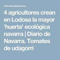 4 agricultores crean en Lodosa la mayor 'huerta' ecológica navarra | Diario de Navarra. Tomates de udagorri